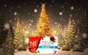 NEF 14 dicembre 2015